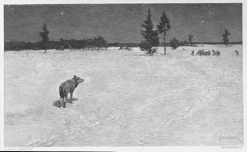 Ignacy Łopieński, Wolves  (To the Candlemass), 1893