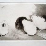 Zofia Stankiewicz, Chicken, 1911/13